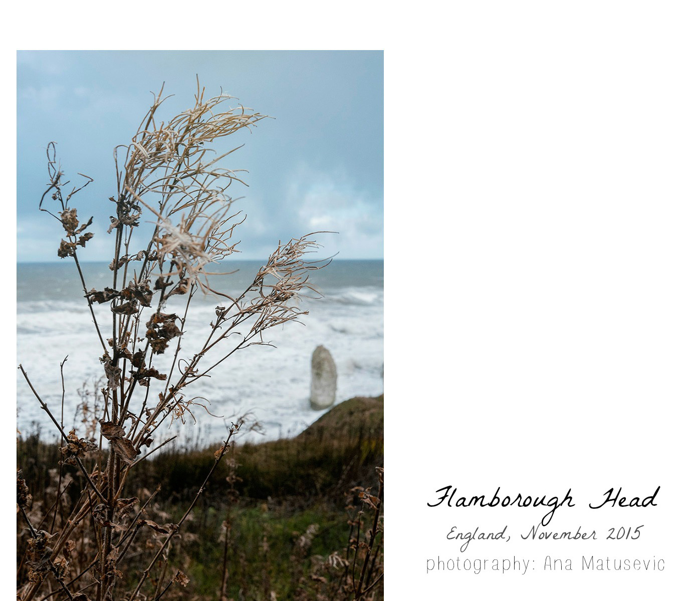 flamborough_england_anamatusevic16